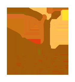 DBSA_Logo_250